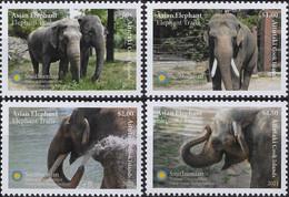 Aitutaki 2021, National Zoologic Park, Elephants, 4val - Aitutaki