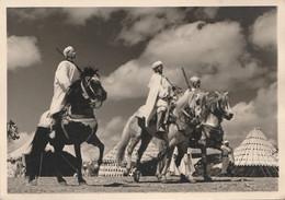 E10- LE MAROC ARTISTIQUE - CAVALIERS DE TRIBUS - (CARTE PHOTO EDITEUR G. GILLET , RABAT - 2 SCANS) - Rabat