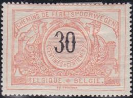 Belgie   .   OBP    .   TR 19     .   *  .    Ongebruikt Met Gom   .   /   .   Neuf Avec Gomme - 1895-1913