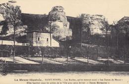A11714-LES ROCHES, LES DAMES DE MEUSE, SAINT MIHIEL LA MEUSE FRANCE POSTCARD - Saint Mihiel