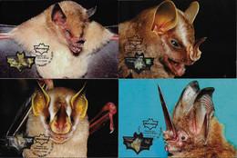 Brazil 2010 Complete Series Of 4 Maximum Card Stamp RHM-C-3059/3062 Animal Fauna Mammal Bat - Bats