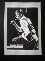 David BOWIE (by Per Nilsen) - Musica