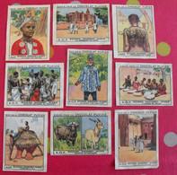 Lot 9 Images Chromo Chocolat Pupier. Album Afrique 1950. AOF Soudan Niger Dahomey Mosquée Mopti Buffle Antilope Djenné - Altri