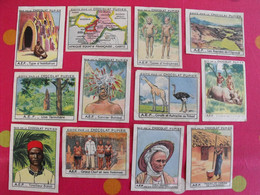Lot 12 Images Chromo Chocolat Pupier. Album Afrique 1950. AEF Gabon Oubangui Chari Ogoué Batéké Tchad Balali Congo - Altri