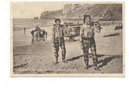 PORTUGAL - NAZARÉ  [ 0169 ] - PESCADORES TRANSPORTANDO CONDUZZINDO PEIXE PARA O ME PESCA FISHING Angeln Fischen PECHEUR - Leiria