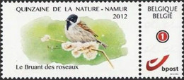 DUOSTAMP** / MYSTAMP** - BUZIN  - Brant Des Roseaux / Emberiza Schoeniclus - Quinzaine De Namur 2012 - Sperlingsvögel & Singvögel