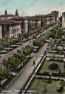 CARTOLINA  SASSUOLO,MODENA,EMILIA ROMAGNA,VIALE XX SETTEMBRE,STORIA,MEMORIA,BELLA ITALIA,.CULTURA,VIAGGIATA 1956 - Modena