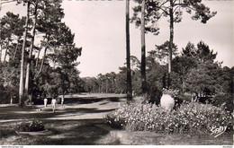 D40  HOSSEGOR  Le Golf - Hossegor