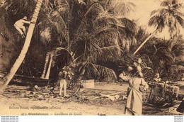 GUADELOUPE  Cueillette De Cocos - Unclassified