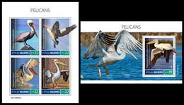 MALDIVES 2019 - Pelicans - YT 6932-5 + BF1342, CV=31 € [MLD190504] - Pelicans
