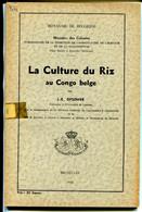 La Culture Du Riz Au Congo Belge , Opsomer - Bélgica