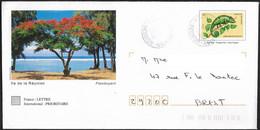 Entier  Caméléon - La Réunion - Flamboyant -  42K/0303215 - Andere