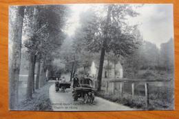 Sint Genesius Rode.  SBP  Chemin De L'Etang. Attelage  Chien -Hondengespan Belgische Trekhond  Mâtin Belge. - Rhode-St-Genèse - St-Genesius-Rode
