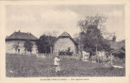 (27)    OLOUISE-CRUCILLEUX - Les Sapins-Verts - Altri Comuni