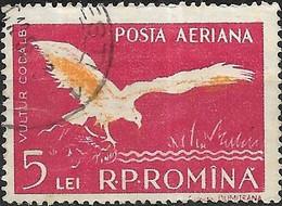 ROMANIA 1957 Fauna Of The Danube Delta - 5l. White-tailed Sea Eagle FU - Oblitérés