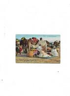 Carte Postale Ancienne Type Arabe La Halte Des Chameliers - Women