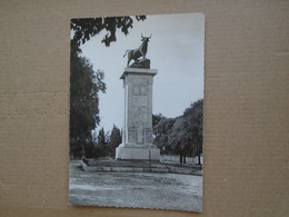 Nîmes , Le Taureau - Nîmes