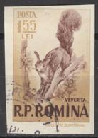 Rumänien 1621 O Eichhörnchen - Oblitérés