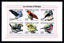 Niger 1998, Birds Of Africa, 6val In BF IMPERFORATED - Sperlingsvögel & Singvögel