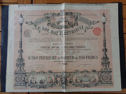BELGIQUE - BRUXELLES 1896 - CIE MUTUELLE  EAU, GAZ, ELECTRICITE - ACTION PRIVILEGIEE DE 250 FRS - Unclassified