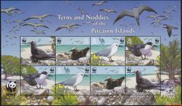 Pitcairneilanden 2007 - Mi:717/720 KB, Small Sheet - XX - Wwf Seabirds - Pitcairninsel