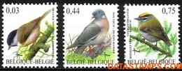 België 2005 - Mi:3434/3436, Yv:3374/3376, OBP:3389/3391, Stamp - XX - Birds Glossy Tit, Wood Pigeon, Fire Gold Rooster - 1985-.. Vogels (Buzin)