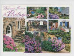 Maisons Fleuries De Bretagne (éd Art Jack) - Bretagne