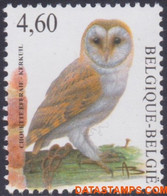 België 2010 - Mi:4029, Yv:3964, OBP:3983, Stamp - XX - Birds Barn Owl - 1985-.. Vogels (Buzin)