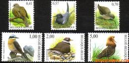 België 2002 - Mi:3185/3190, Yv:3129/3134, OBP:3135/3140, Stamp - XX - Birds Turkish Turtle, Black Skein, Redshank, Tapu - 1985-.. Vogels (Buzin)