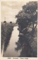 7599) SIRACUSA - Fiume ANAPO - Very Old !! - Siracusa