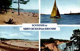 N°13351 Z -cpsm Souvenir De Saint Georges De Didonne - Gruss Aus.../ Gruesse Aus...