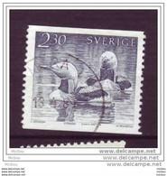 Suède, Sweden, Canard, Oiseau, Oiseaux, Bird, Birds, Duck - Patos