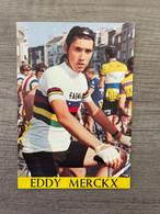 EDDY MERCKX / Pok Editions 245 - Cycling