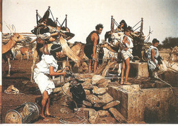 CPS MAURITANIE 1950 PUITS PRES DE NEMA HODH ORIENTAL - Mauritania