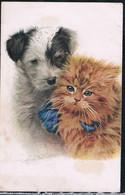 Chat Et Chien  -cat Dog-rost Poesje En Hond -katzen Hunde - Chats