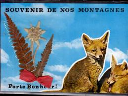 SOUVENIR DE NOS MONTAGNES   _  PORTE-BONHEUR - Gruss Aus.../ Gruesse Aus...