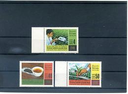 A49020)Tee: Ceylon 359 - 361** - Heilpflanzen