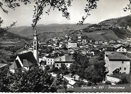 DP887 - TESERO - VAL DI FIEMME - F.G. VIAGGIATA 1957 - Andere Städte