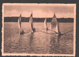 Virelles - Lac De Virelles - Course De Voiliers - Chimay