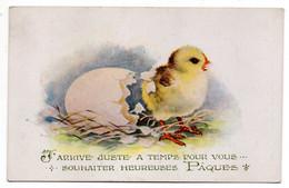 """Heureuses Pâques--- 1925---"""" J'arrive Juste à Temps Pour Vous """" --poussin , Oeuf ......à Saisir - Easter"""