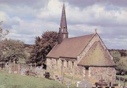 61 Saint Philbert Sur Orne Eglise Saint Philbert (Carte Vierge) - Otros Municipios
