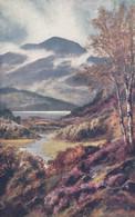 Postcard Loch Achray Trossachs Tuck Through The Trossachs 8569 [ Picture Puzzle ] My Ref B14434 - Tuck, Raphael