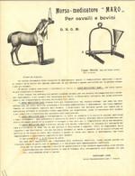 MORSO MEDICATORE PER CAVALLI - Foglio Pubblicitario 1900 Cm 22x29 (1278) - Equitation