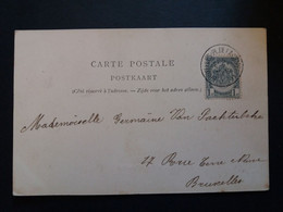 """Belgique  Oblitération Bruxelles Place De La Chapelle Sur CP Vue """" Le Parc Waux Hall """" - Cartoline [1871-09]"""