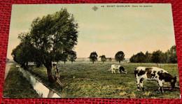 SAINT-GHISLAIN  -  Dans Les Prairies   -  1909 - Saint-Ghislain