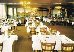 67 Hotel Restaurant Lion D'Or La Petite Pierre Wingen Sur Moder (Carte Vierge) - Andere Gemeenten
