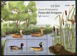 Uruguay - 2018 - Yt 2911/2914 - Faune - Canards D'Uruguay - ** - Uruguay
