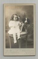 Photographie Cdv Fillette Et Chien De Nevers Photo Guérot - Antiche (ante 1900)