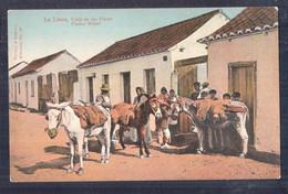 SPAIN LA LINEA - CALLE DE LAS FLORES UNUSED DONKEYS - Cádiz