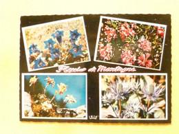 V11-A-38-isere-fleurs De Montagne- 4 Vues-- - Sin Clasificación